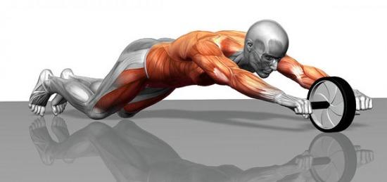 упражнения с помощью ролика